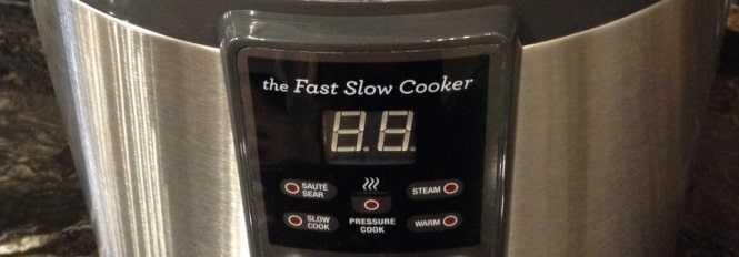 Cosori Electric Pressure Cooker vs Breville Fast Slow Pro