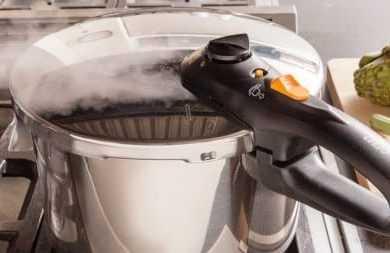Fagor Duo Vs Elite Pressure cooker