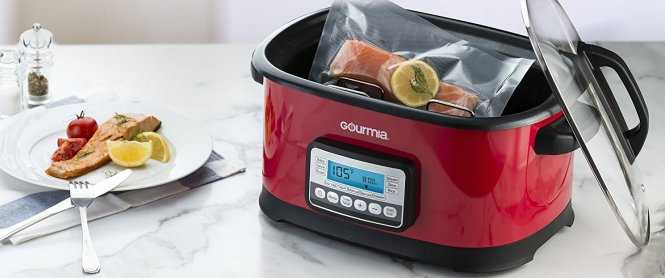 Gourmia GSV550 Sous Vide Water Oven Cooker Review