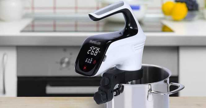 Slaiya Digital Sous Vide Pod Immersion Circulator Precision Cooker Review