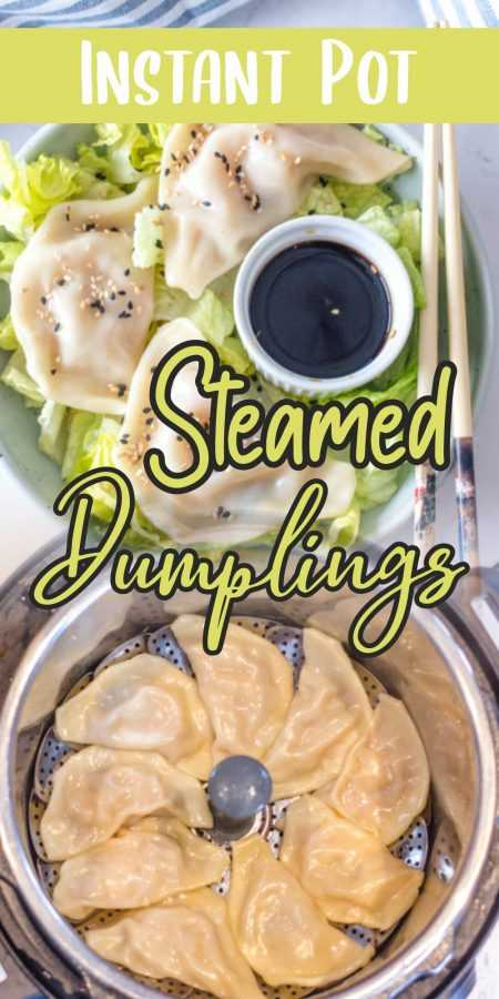 Instant Pot Steamed Dumplings